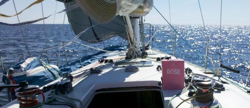 rose_race_2012-08-11_007